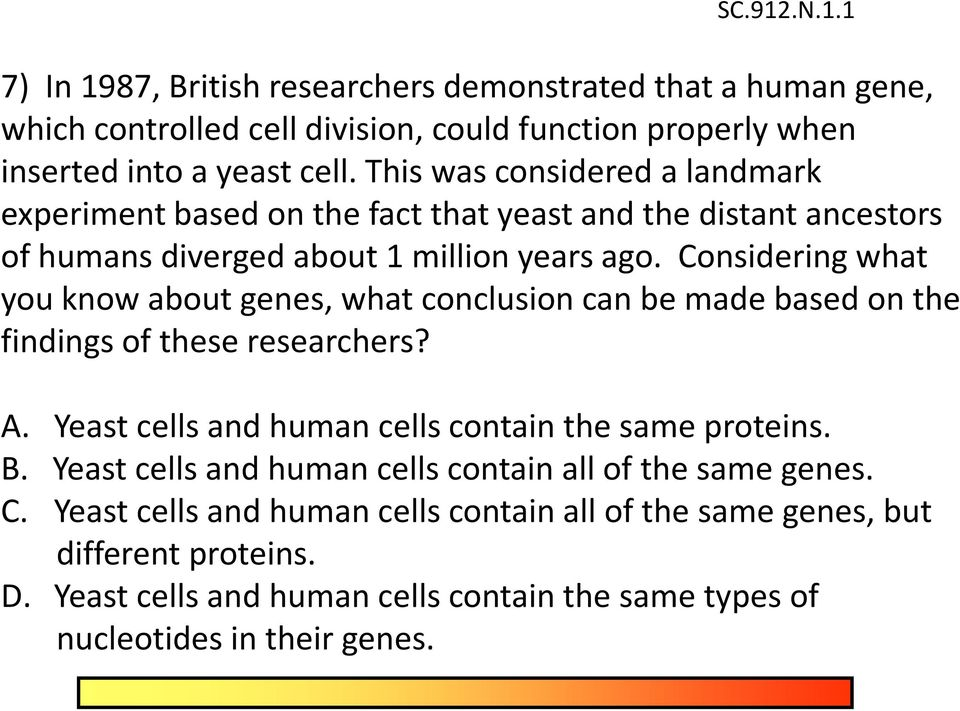 Considering what you know about genes, what conclusion can be made based on the findings of these researchers? A. Yeast cells and human cells contain the same proteins. B.