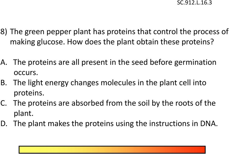The proteins are all present in the seed before germination occurs. B.