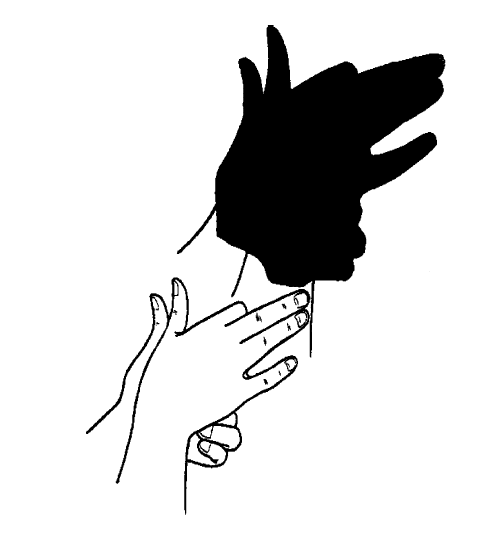 SHADOW PUPPETS Put your hands together as shown below in the illustration.