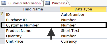 Figure 2 - Customer Number in two tables Relationships and Data Types When developing multiple tables, the Data Type for the common field will be defined differently in the various tables.