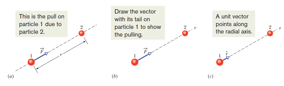 The gravitational force is a mutual force between two separated objects