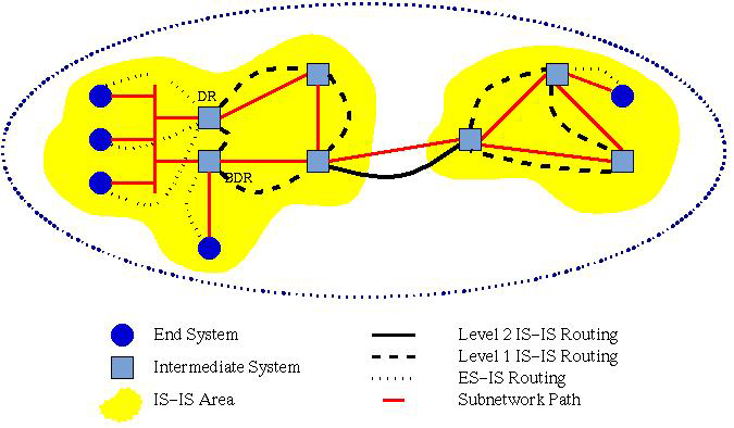 Network Layer 63 protocol is used in conjunction with IS-IS.