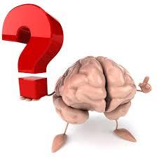 Workshop Outline Introduction The Brain What is Concussion?
