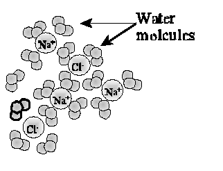 Minneapolis Community and Technical College Introductory Chemistry Laboratory Experiment: Ionic Precipitation Reactions in Aqueous Solutions Objectives: Identify the ions present in various aqueous