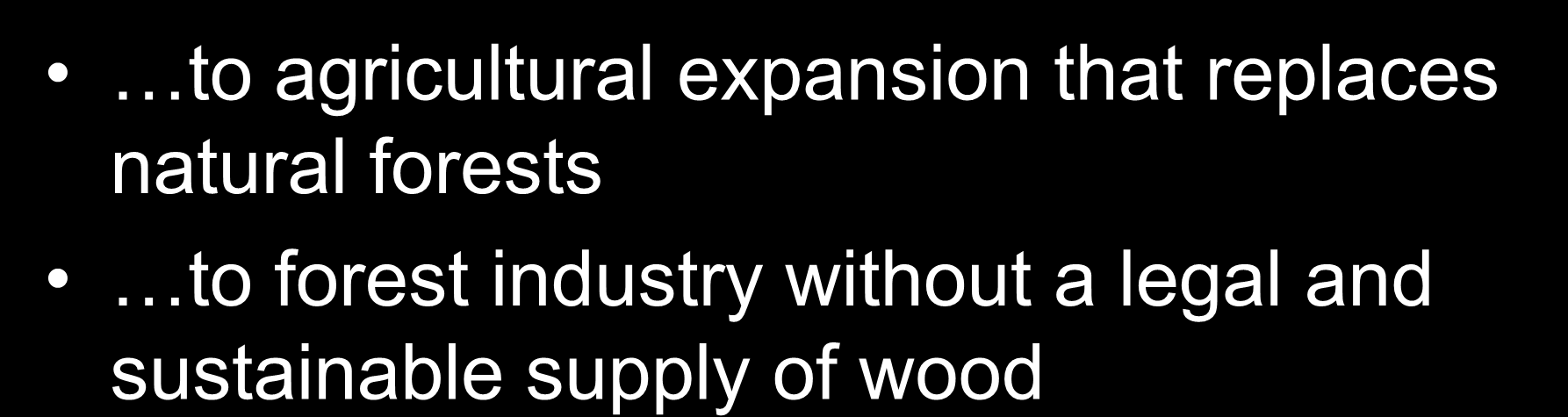 natural forests to forest industry