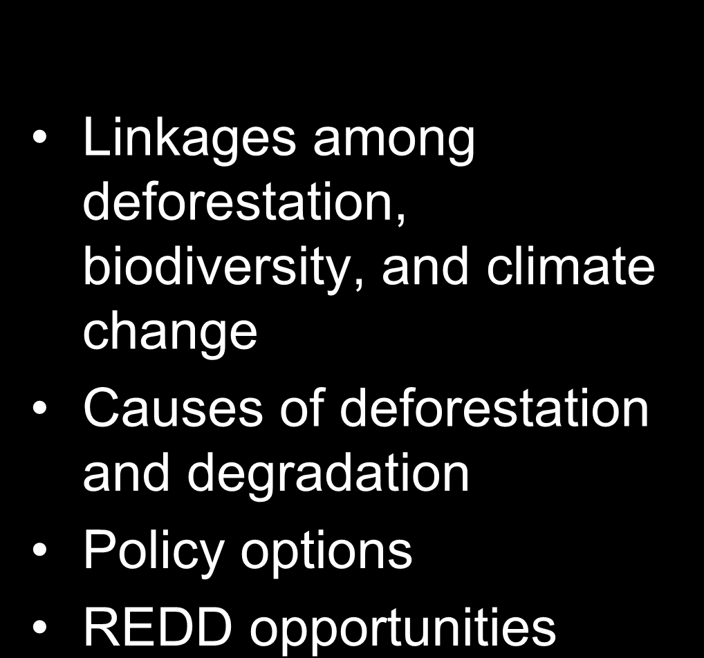 climate change Causes of deforestation