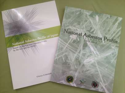 National Asbestos Profile 2007 ILO/WHO Outline for the Development of National Programmes for the Elimination of Asbestos-Related Diseases http://www.ilo.