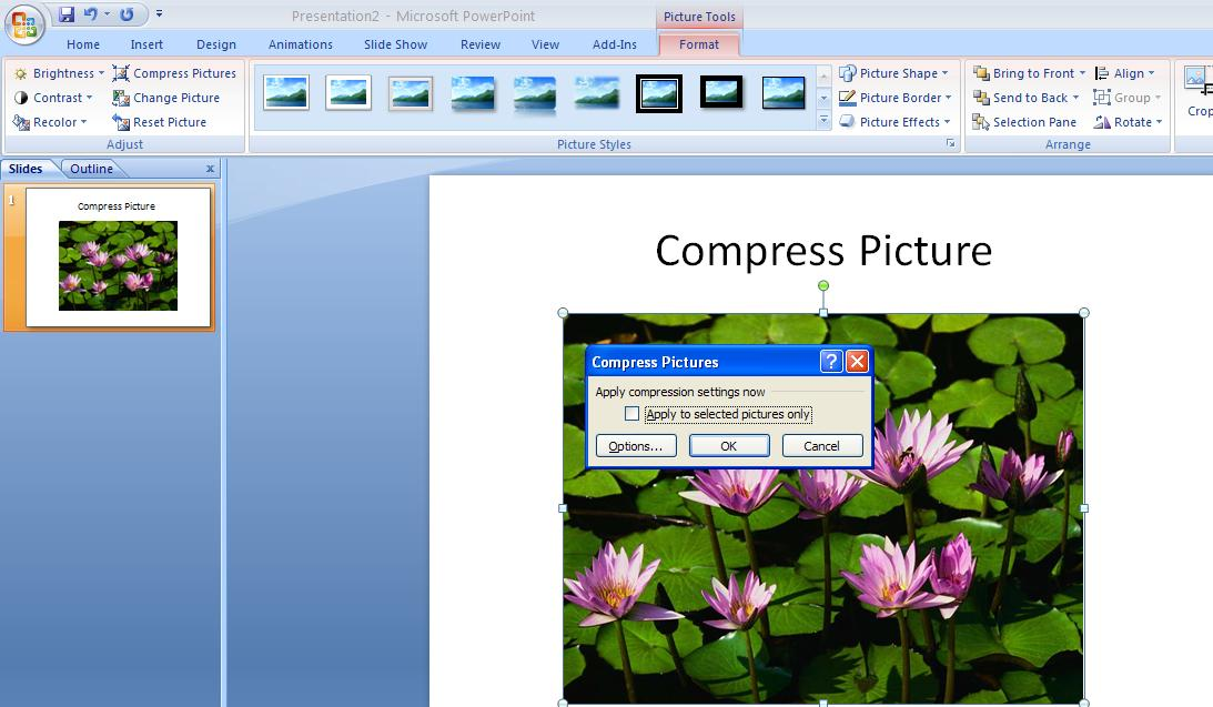 When you are finished creating your PowerPoint presentation, compress the size of the images in the file. The smaller file will improve the universal accessibility for all users.