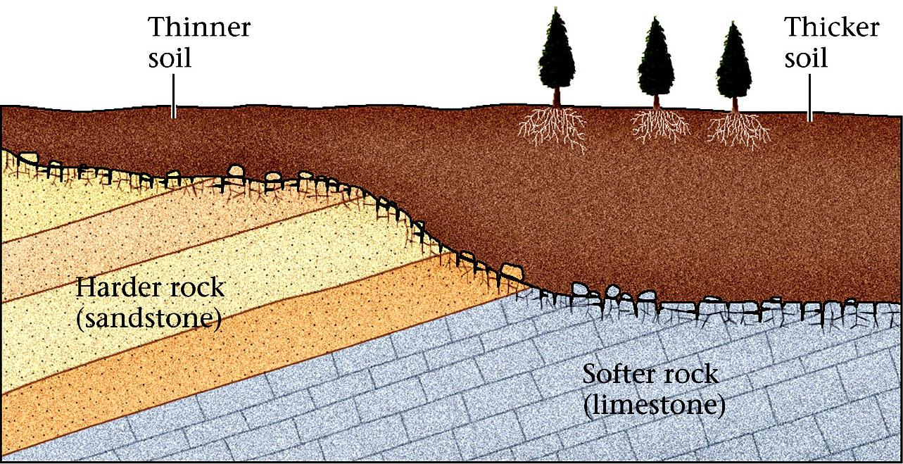 Soil Thickness 3- Bedrock Type: Thick soils will form over bedrock that is easily weathered, such as