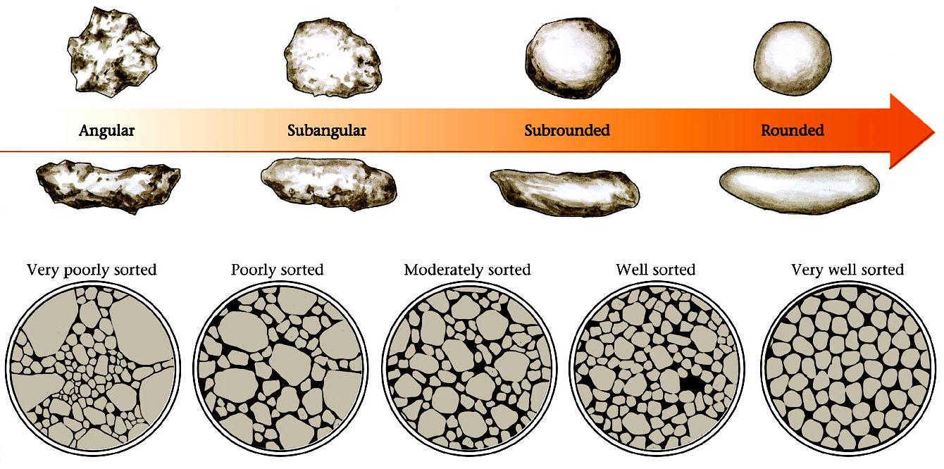 Classifying Clastic Sedimentary Rocks Clastic/Detrital rocks are classified by: 1.