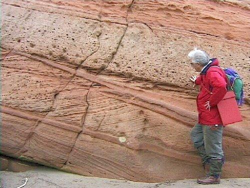 Cross Bedding Cross Bedding: Internal laminations within a bed that are not parallel to the larger bedding orientation.
