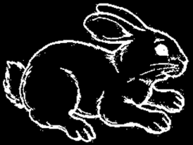 Look at the picture and write: true (t) or false (f) The rabbit s eyes are small. The rabbit s ears are short.