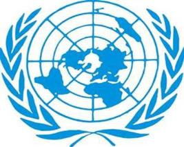 Framework for Joint Internal Audits of United Nations Joint Activities Endorsed