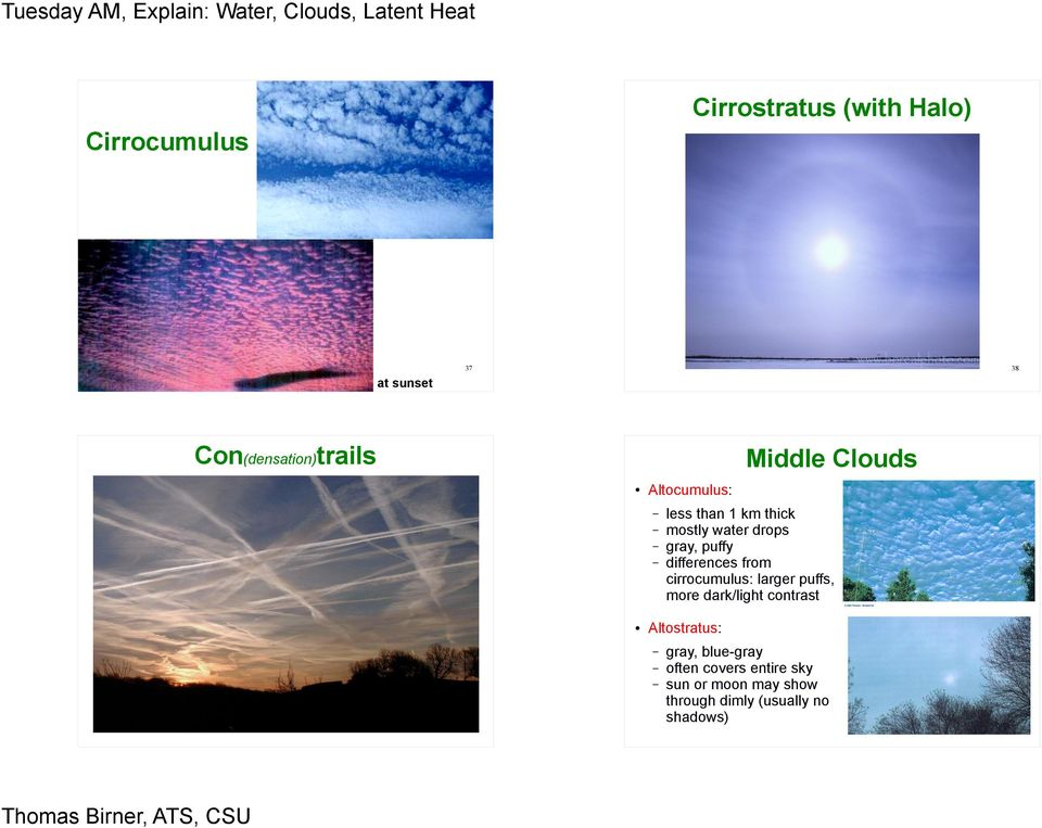 differences from cirrocumulus: larger puffs, more dark/light contrast 39
