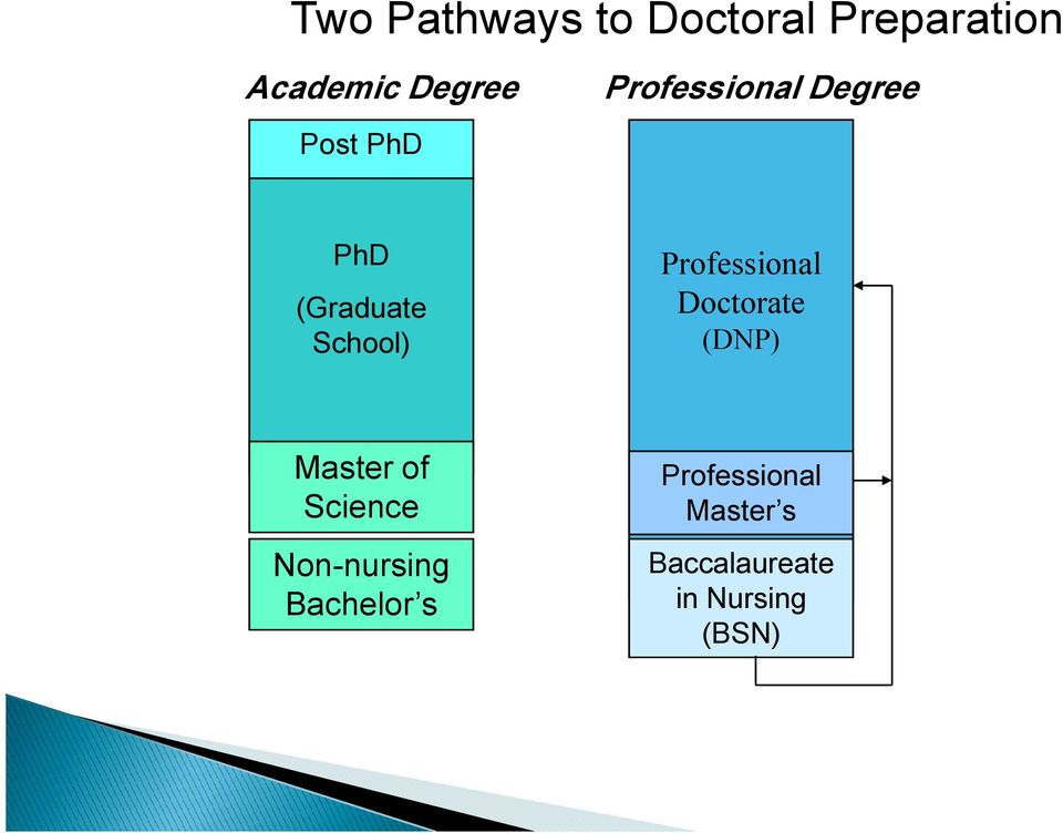 Professional Doctorate (DNP) Master of Science