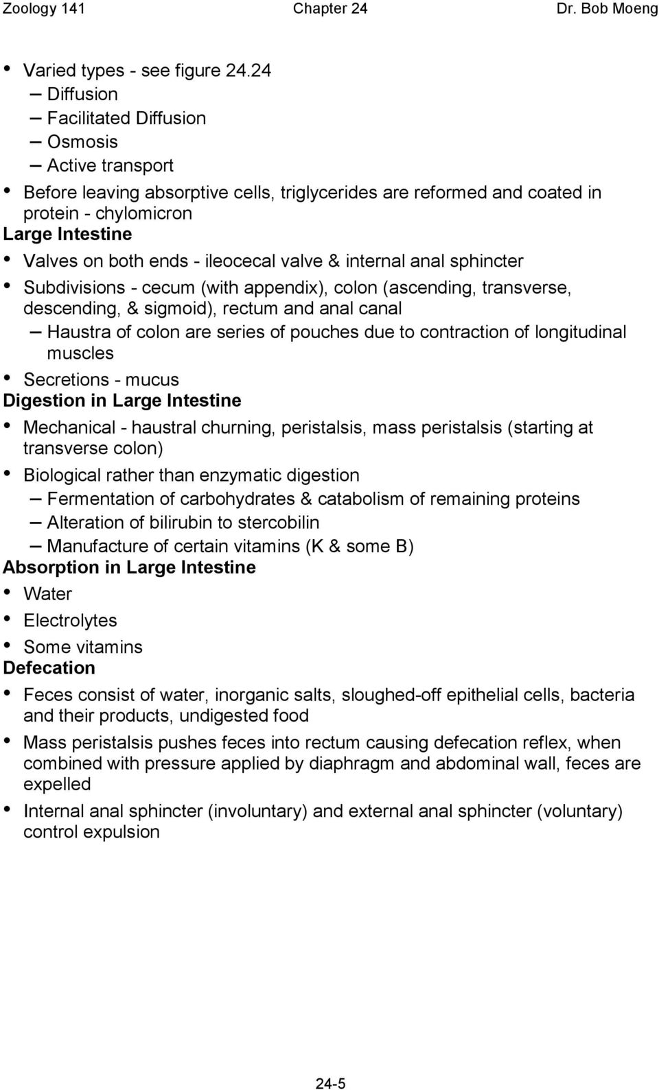 ileocecal valve & internal anal sphincter Subdivisions - cecum (with appendix), colon (ascending, transverse, descending, & sigmoid), rectum and anal canal Haustra of colon are series of pouches due