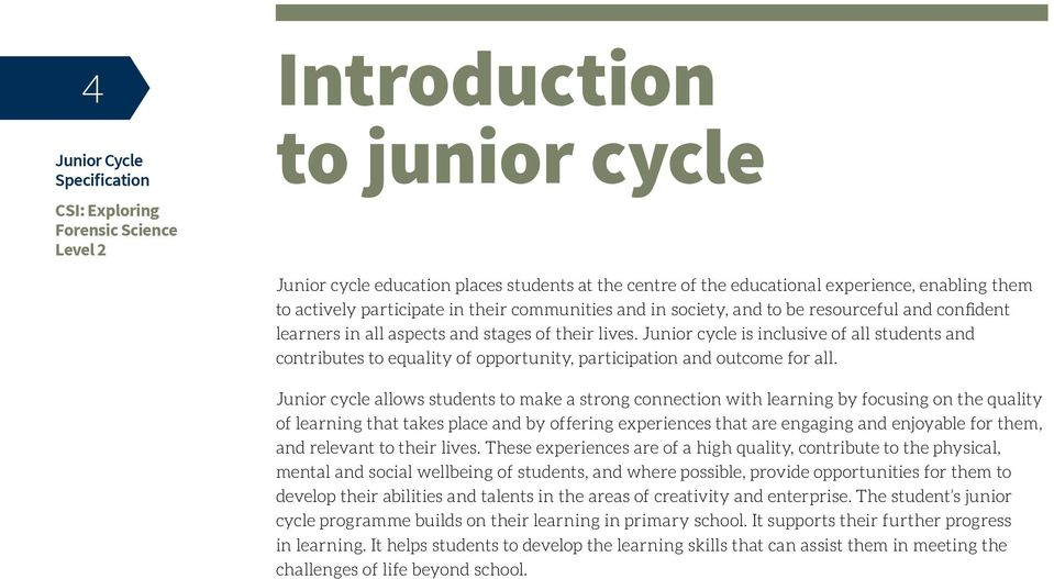 Junior cycle allows students to make a strong connection with learning by focusing on the quality of learning that takes place and by offering experiences that are engaging and enjoyable for them,