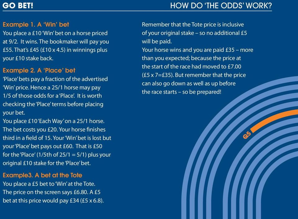THE EASY BETTING GUIDE NEXT - PDF
