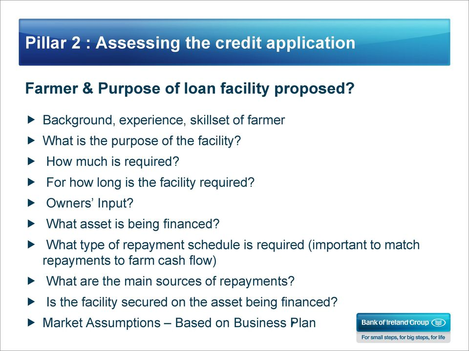 For how long is the facility required? Owners Input? What asset is being financed?