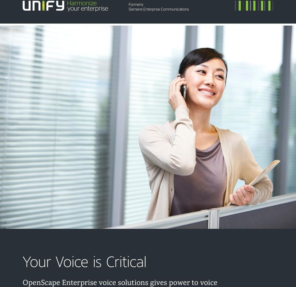 Enterprise voice