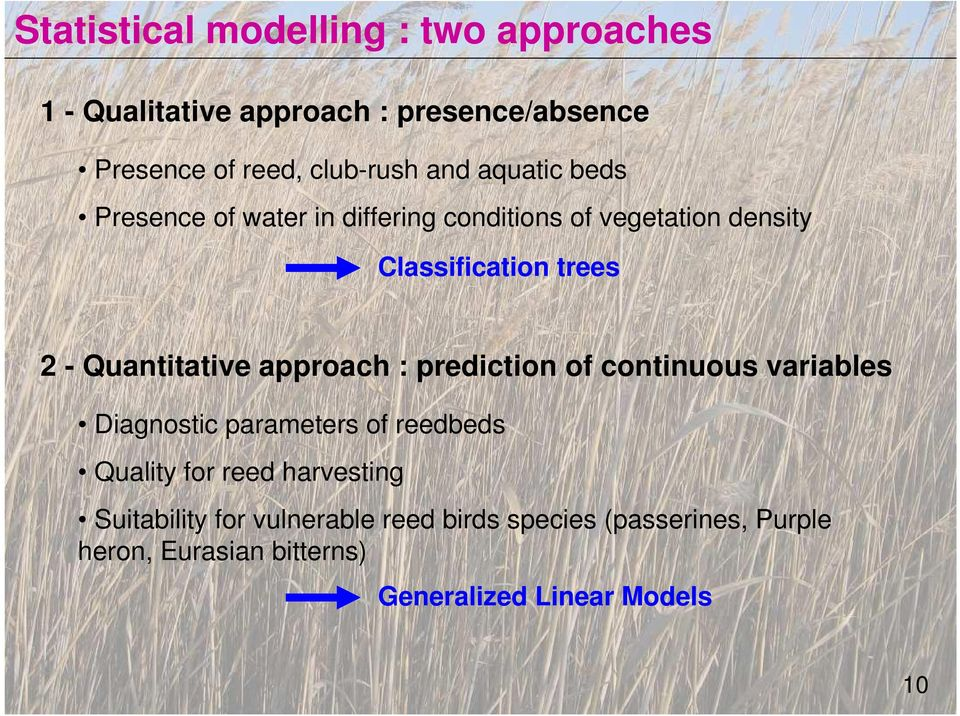 approach : prediction of continuous variables Diagnostic parameters of reedbeds Quality for reed harvesting
