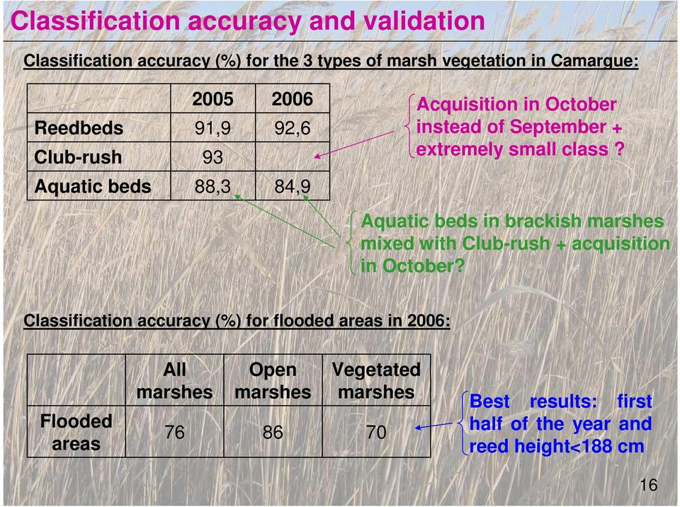Aquatic beds 88,3 84,9 Aquatic beds in brackish marshes mixed with Club-rush + acquisition in October?