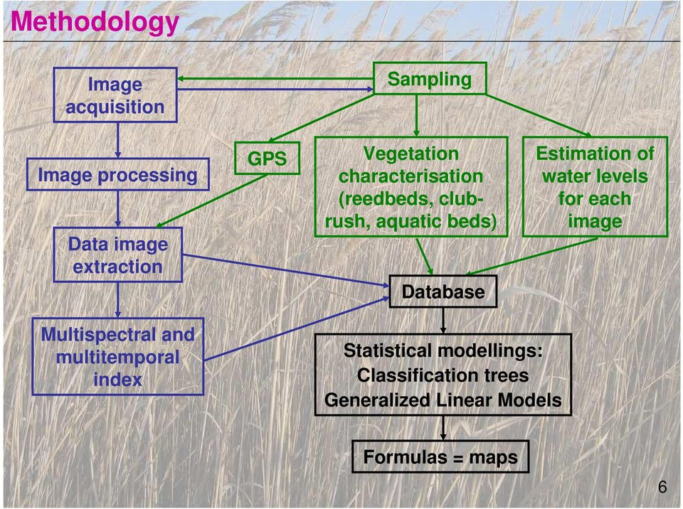 Estimation of water levels for each image Multispectral and multitemporal index
