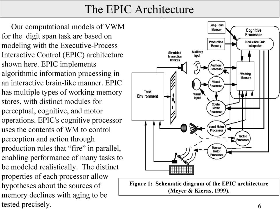 EPIC has multiple types of working memory stores, with distinct modules for perceptual, cognitive, and motor operations.