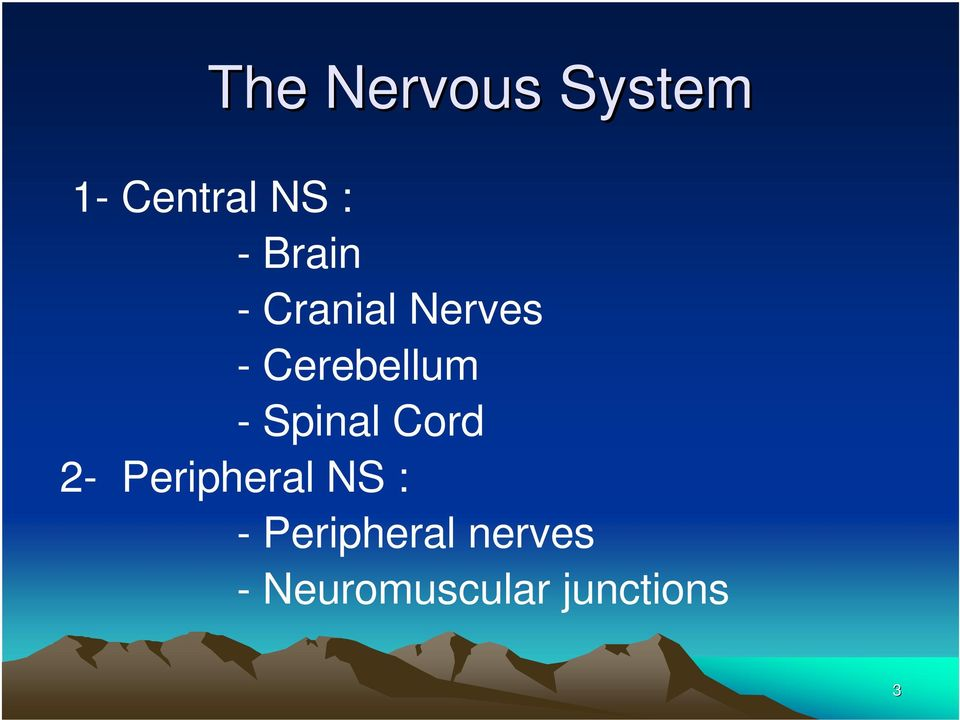 Spinal Cord 2- Peripheral NS : -