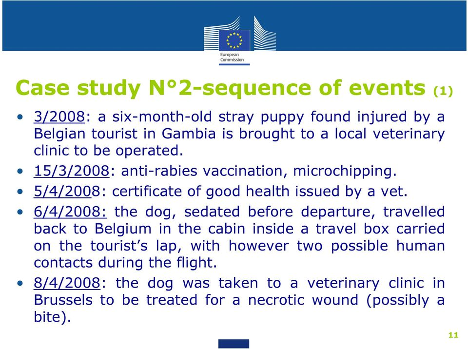 6/4/2008: the dog, sedated before departure, travelled back to Belgium in the cabin inside a travel box carried on the tourist s lap, with however