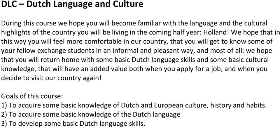 you will return home with some basic Dutch language skills and some basic cultural knowledge, that will have an added value both when you apply for a job, and when you decide to visit our country