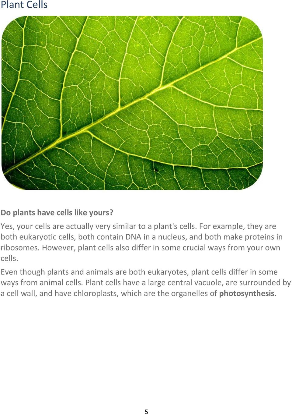 However, plant cells also differ in some crucial ways from your own cells.