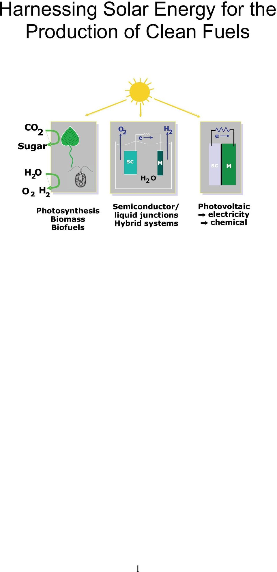 Photosynthesis Biomass Biofuels sc M H 2 O