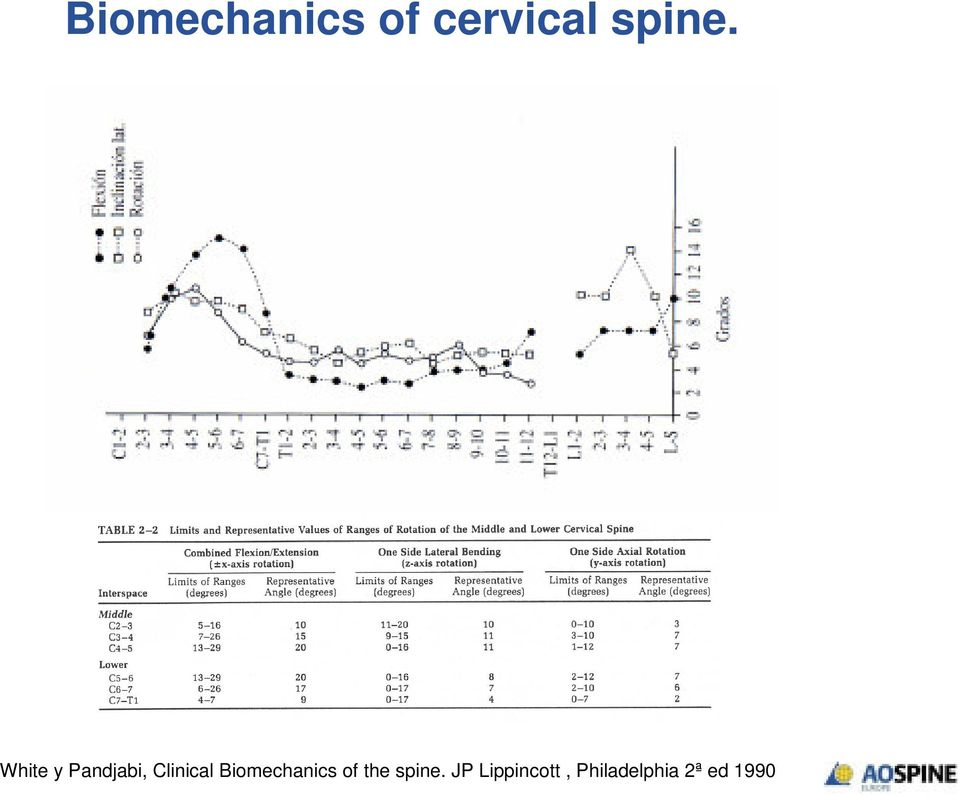 Clinical Biomechanics of the spine.
