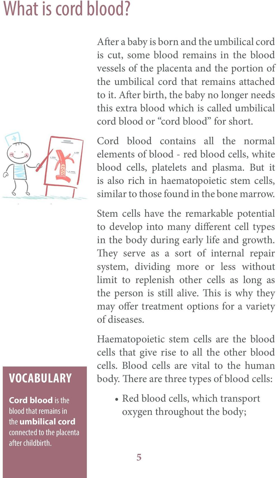 Cord blood contains all the normal elements of blood - red blood cells, white blood cells, platelets and plasma.