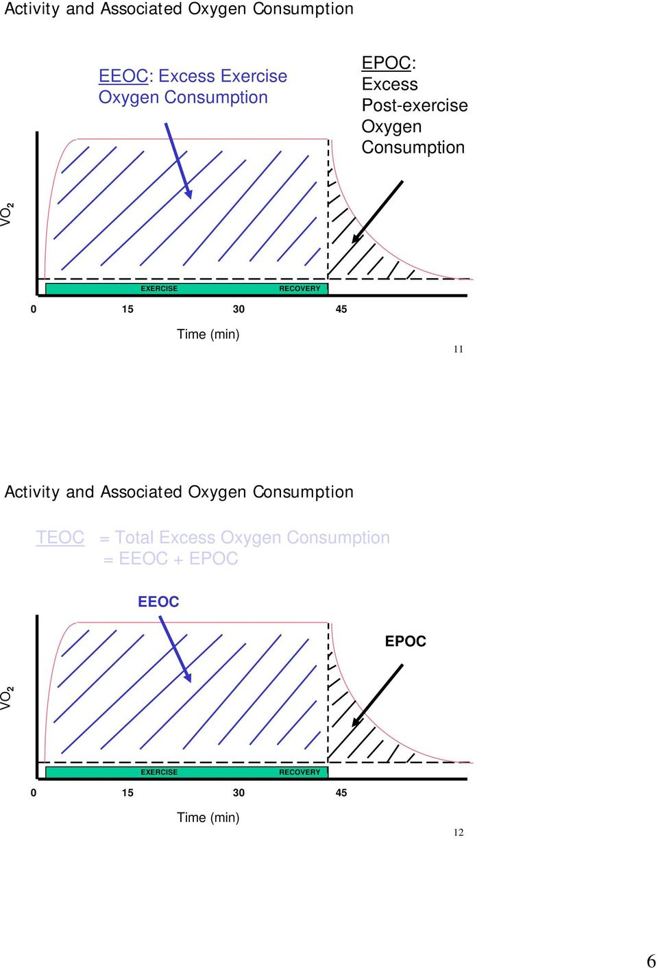 Time (min) 11 Activity and Associated Oxygen Consumption TEOC = Total Excess Oxygen