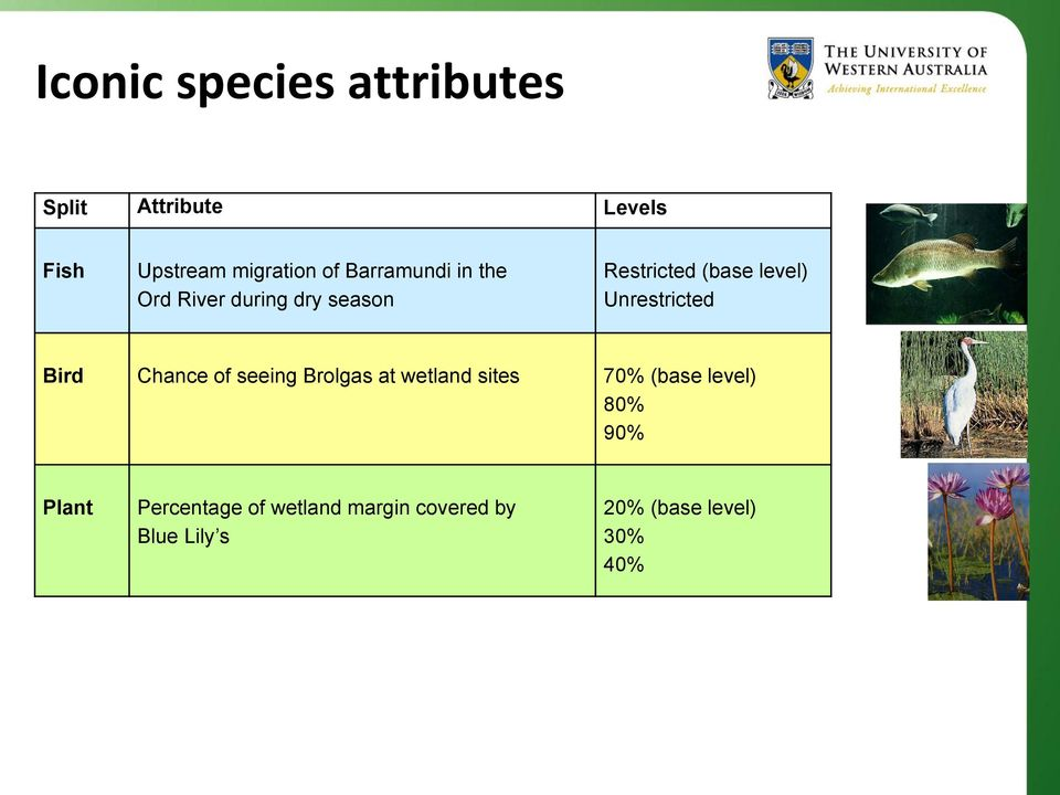 Unrestricted Bird Chance of seeing Brolgas at wetland sites 70% (base level)