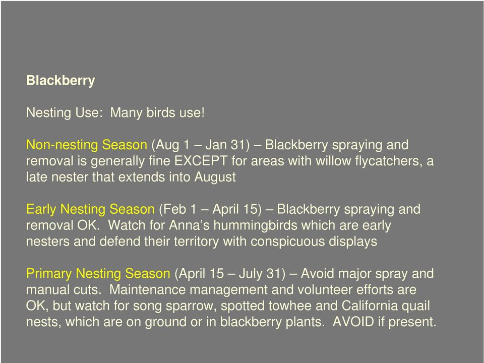 August Early Nesting Season (Feb 1 April 15) Blackberry spraying and removal OK.