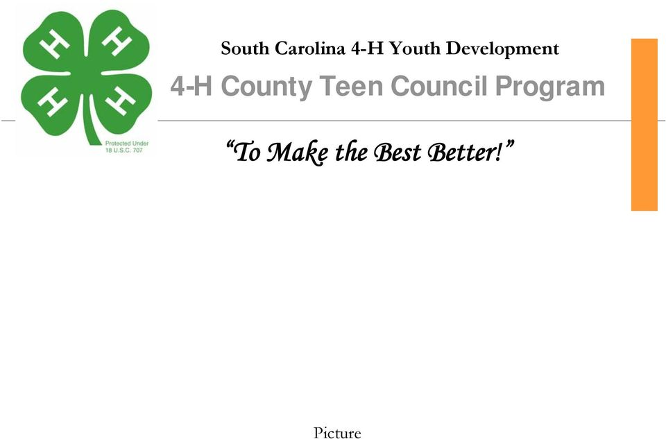 Teen Council Program To