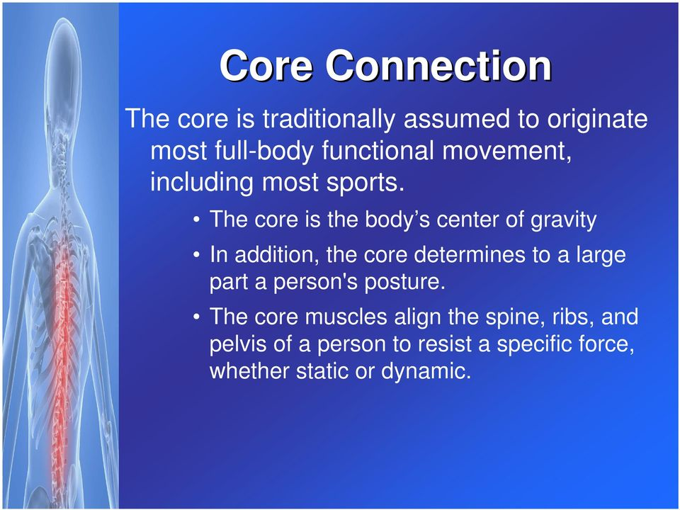 The core is the body s center of gravity In addition, the core determines to a large