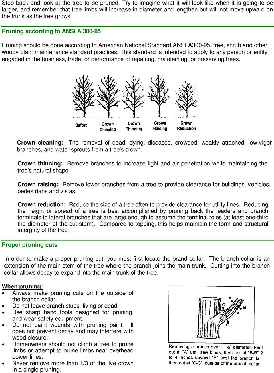 Pruning according to ANSI A 300-95 Pruning should be done according to American National Standard ANSI A300-95, tree, shrub and other woody plant maintenance standard practices.