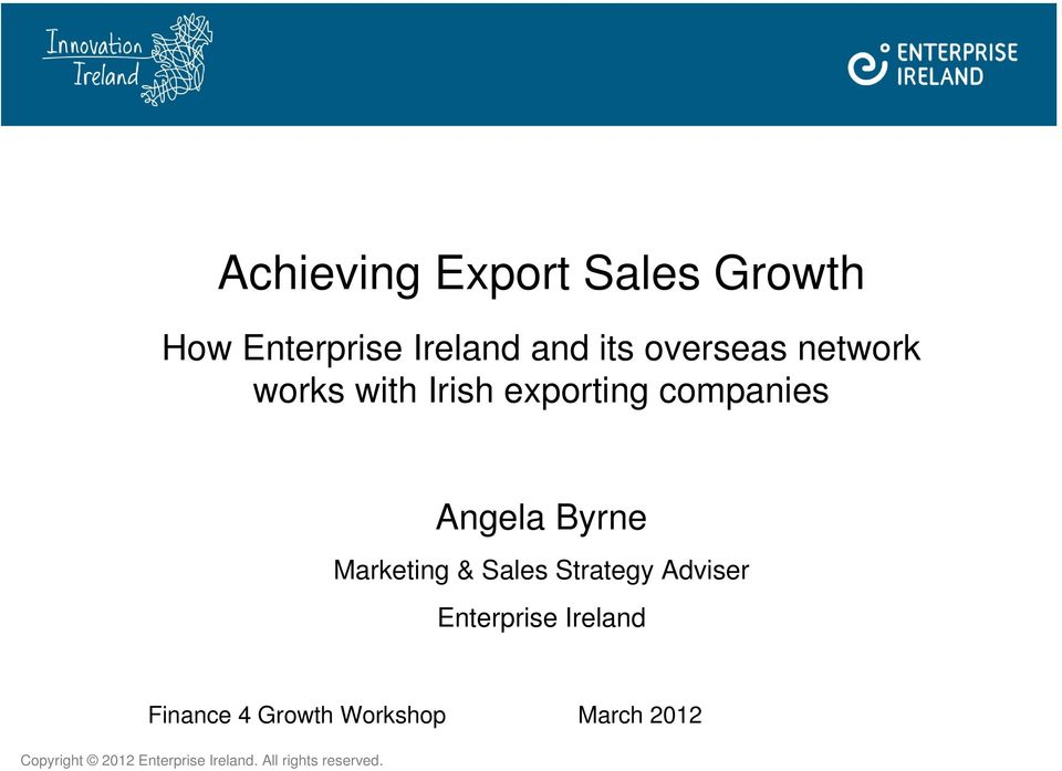 Marketing & Sales Strategy Adviser Enterprise Ireland Finance 4