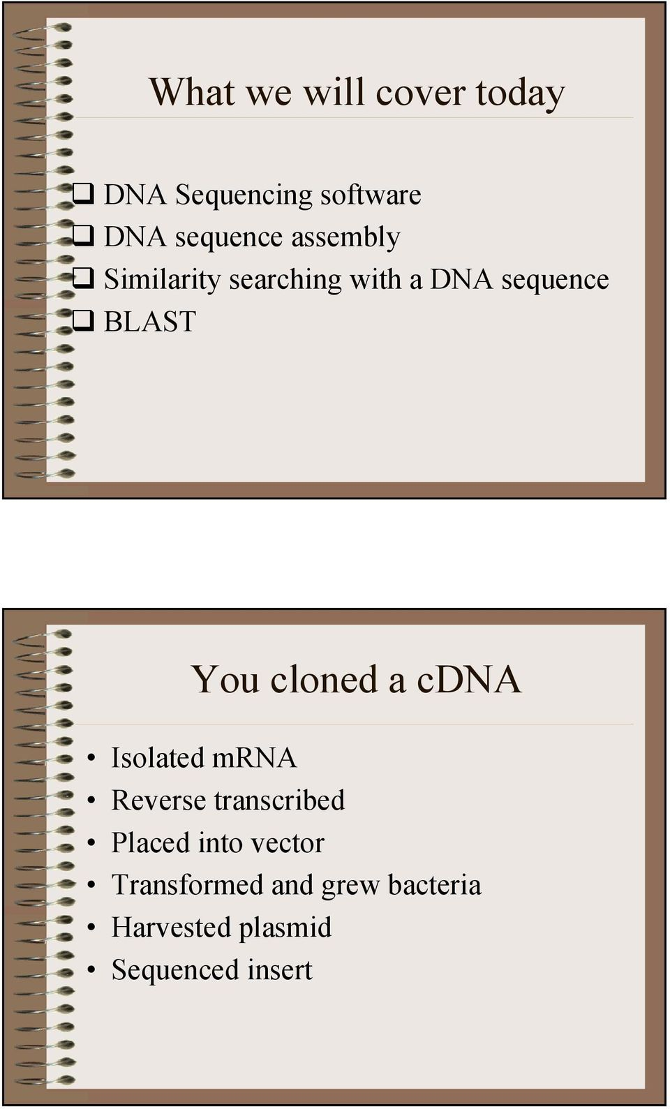 cloned a cdna Isolated mrna Reverse transcribed Placed into