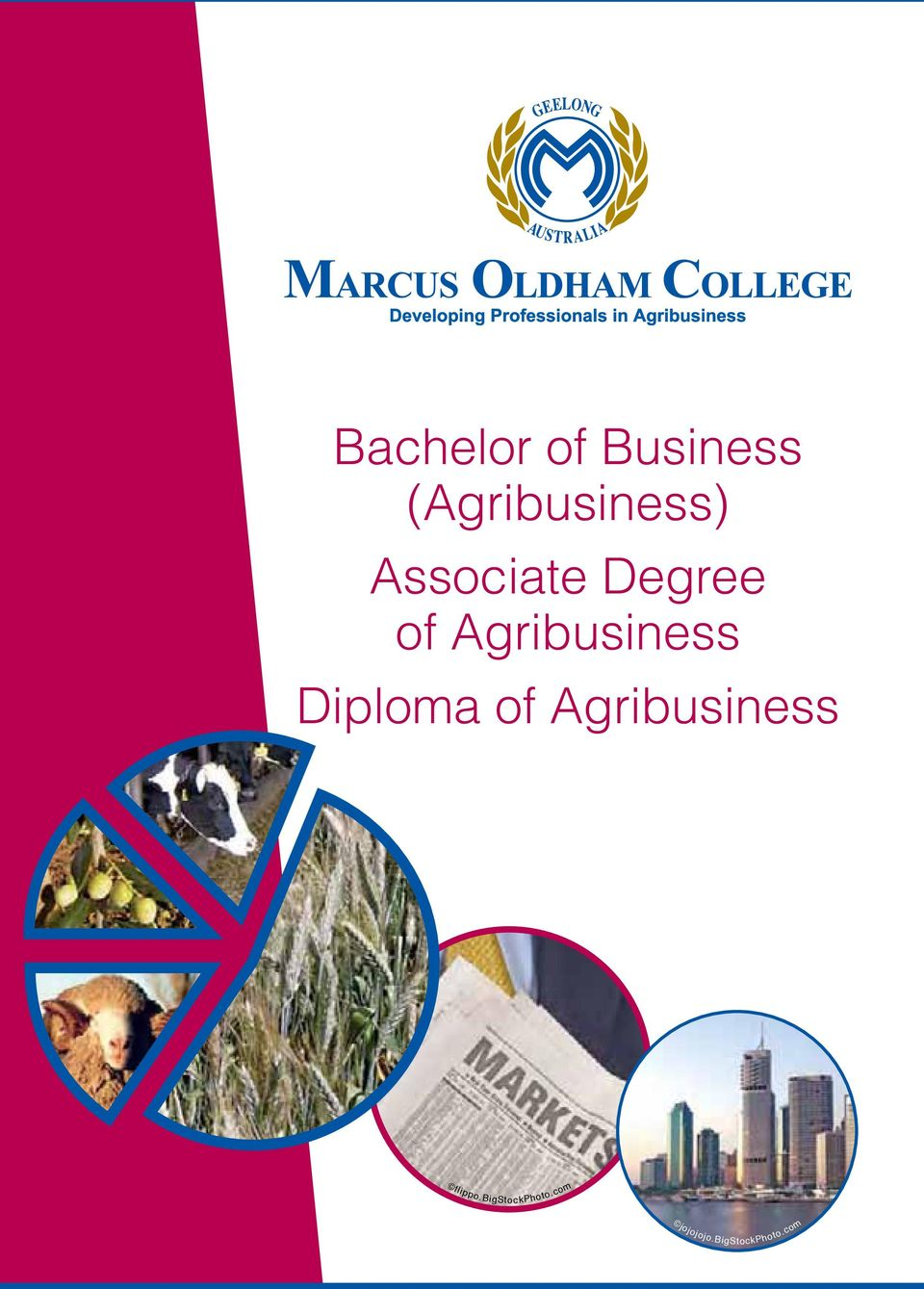 Diploma of Agribusiness flippo.