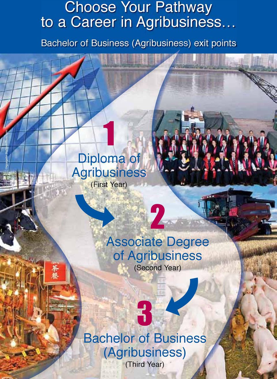 com 1 Diploma of Agribusiness (First Year) 2 Associate Degree of