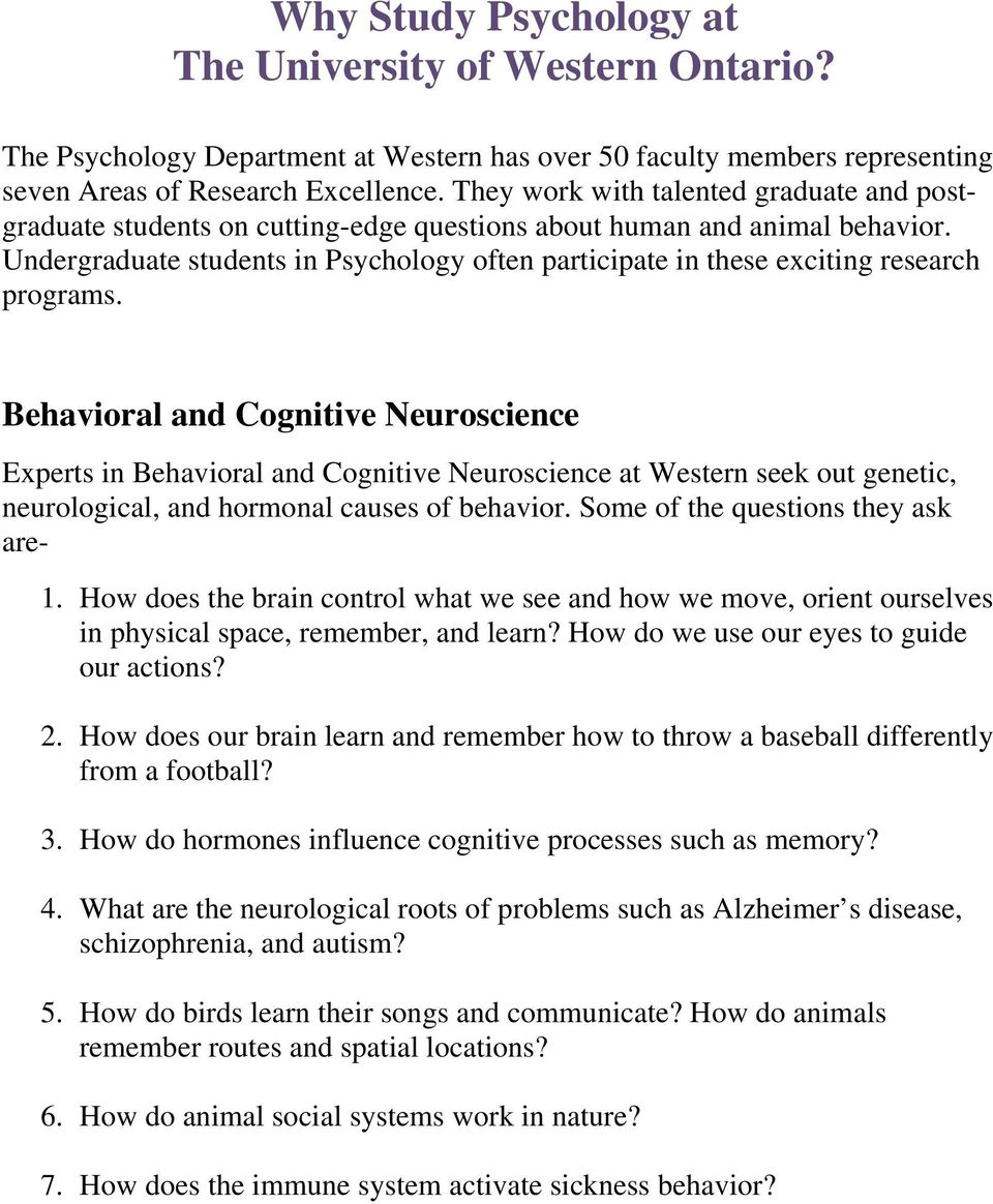 Undergraduate students in Psychology often participate in these exciting research programs.