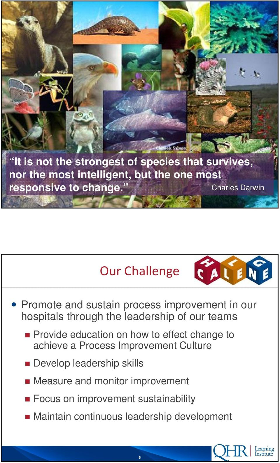our teams Provide education on how to effect change to achieve a Process Improvement Culture Develop leadership