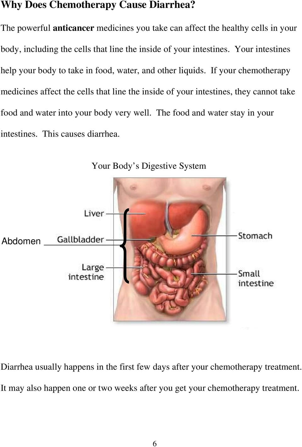 Your intestines help your body to take in food, water, and other liquids.