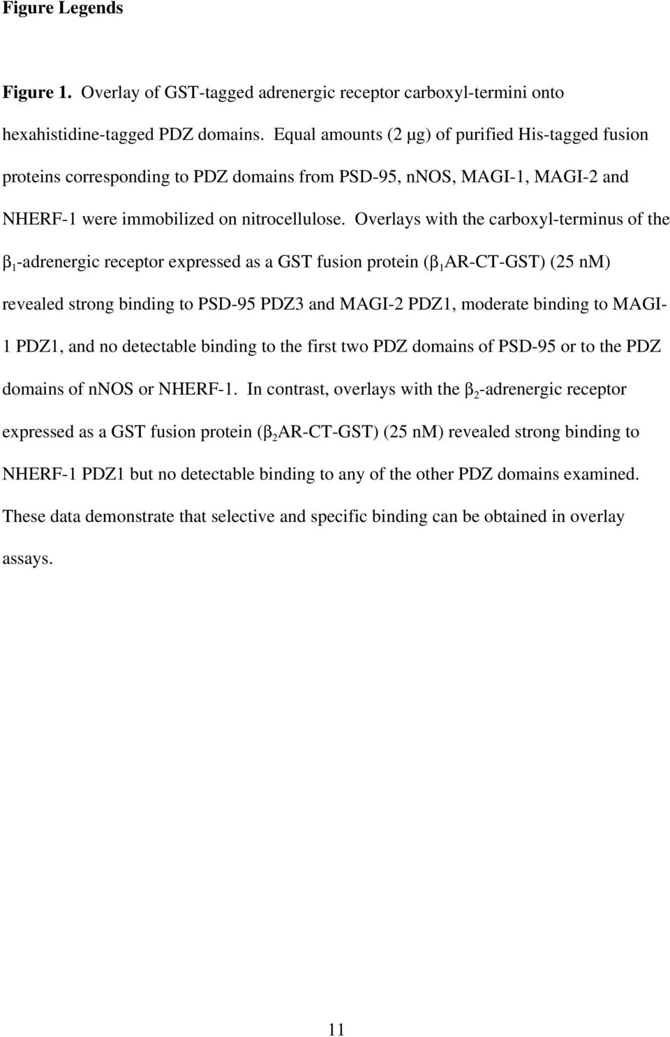 Overlays with the carboxyl-terminus of the β 1 -adrenergic receptor expressed as a GST fusion protein (β 1 AR-CT-GST) (25 nm) revealed strong binding to PSD-95 PDZ3 and MAGI-2 PDZ1, moderate binding