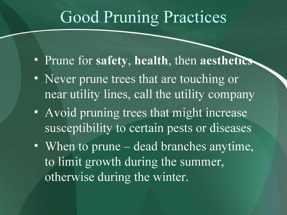 trees that might increase susceptibility to certain pests or diseases When to prune